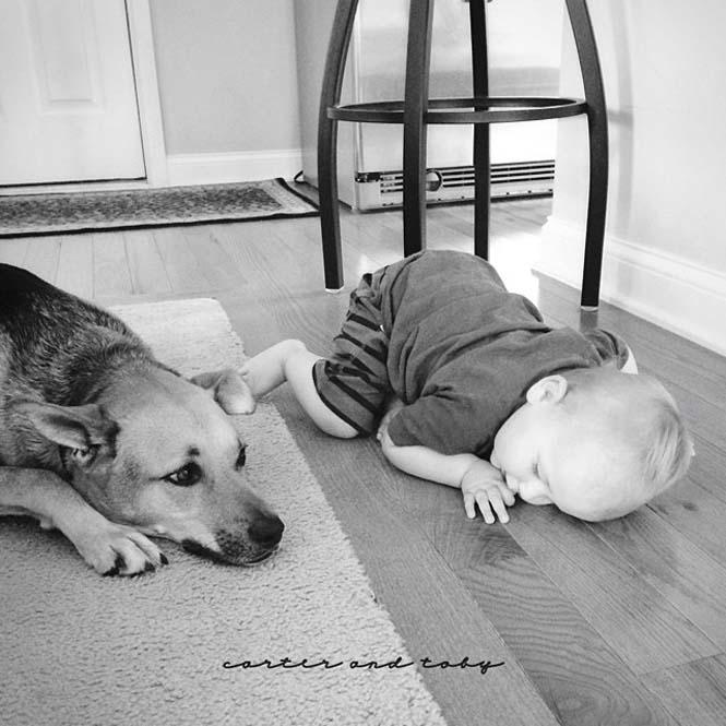 Ένα μωρό και ο τετράποδος κολλητός του (10)