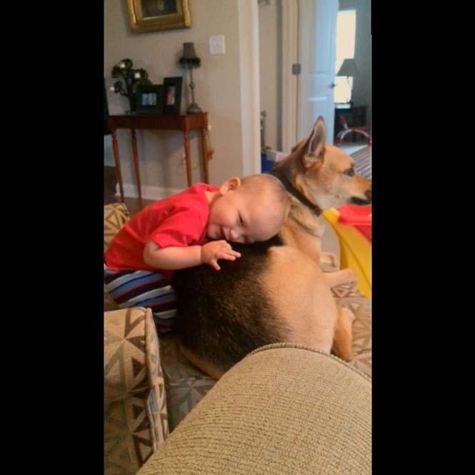 Ένα μωρό και ο τετράποδος κολλητός του (20)
