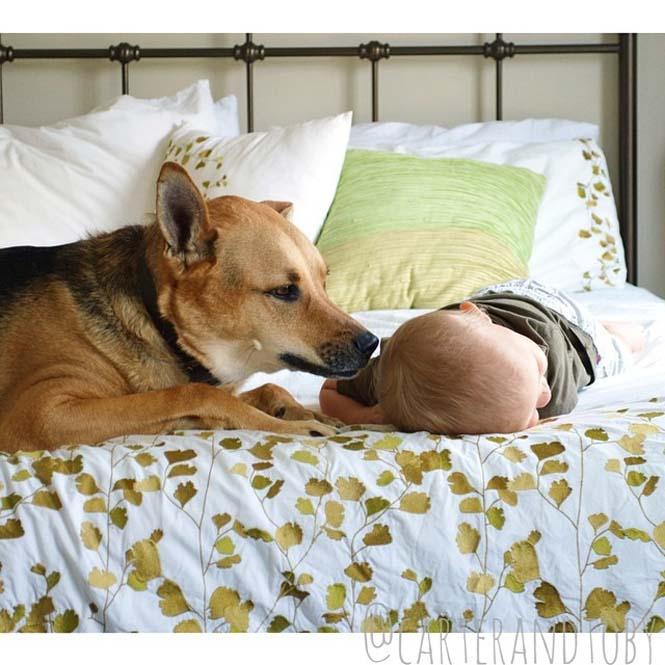 Ένα μωρό και ο τετράποδος κολλητός του (12)