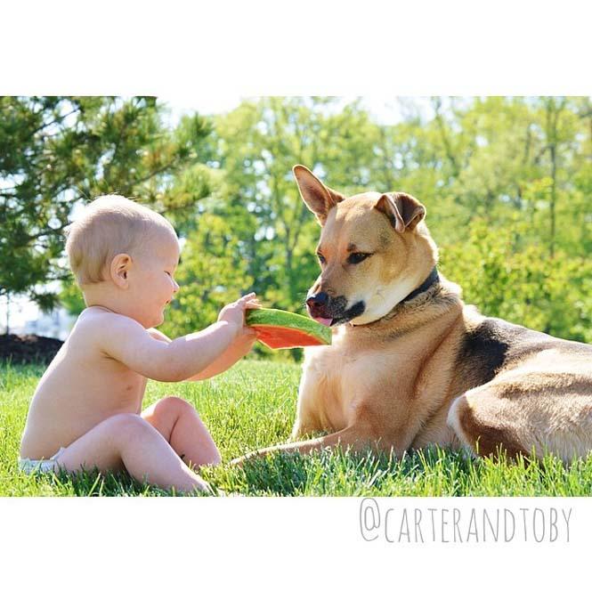 Ένα μωρό και ο τετράποδος κολλητός του (14)