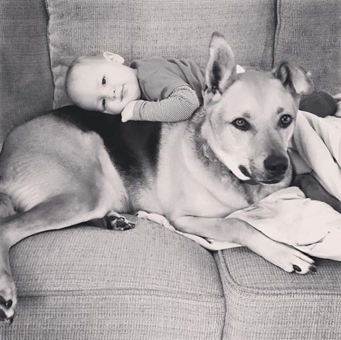Ένα μωρό και ο τετράποδος κολλητός του (6)