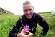 Λουλούδι που σκοτώνει (1)