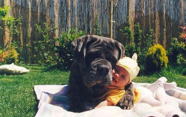 Μωρά με τον μεγάλο σκύλο τους (3)
