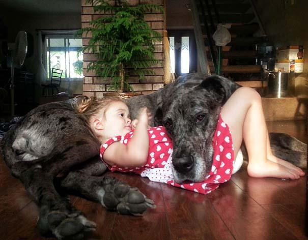 Μωρά με τον μεγάλο σκύλο τους (5)