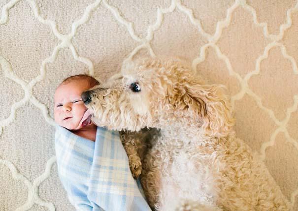 Μωρά με τον μεγάλο σκύλο τους (7)