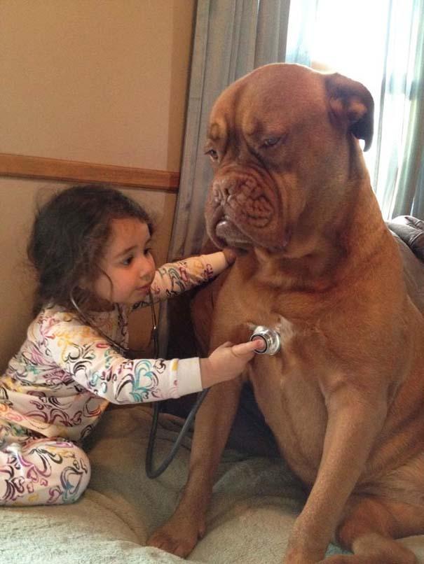 Μωρά με τον μεγάλο σκύλο τους (13)