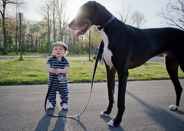 Μωρά με τον μεγάλο σκύλο τους (16)