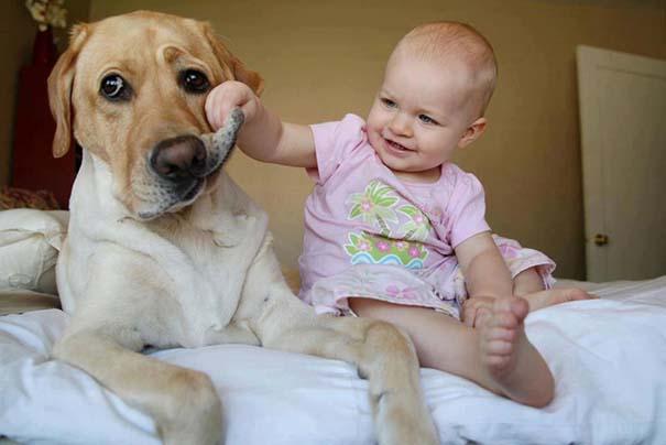 Μωρά με τον μεγάλο σκύλο τους (18)