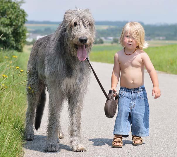 Μωρά με τον μεγάλο σκύλο τους (19)