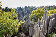 Το μυστηριώδες πέτρινο δάσος στην Κίνα (1)