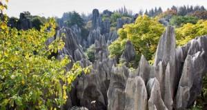 Το μυστηριώδες πέτρινο δάσος στην Κίνα