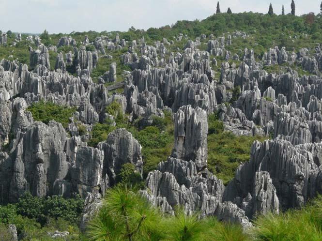 Το μυστηριώδες πέτρινο δάσος στην Κίνα (2)