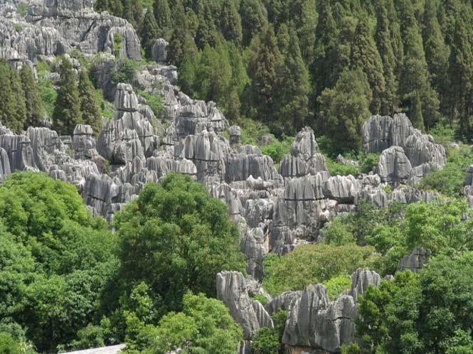 Το μυστηριώδες πέτρινο δάσος στην Κίνα (5)