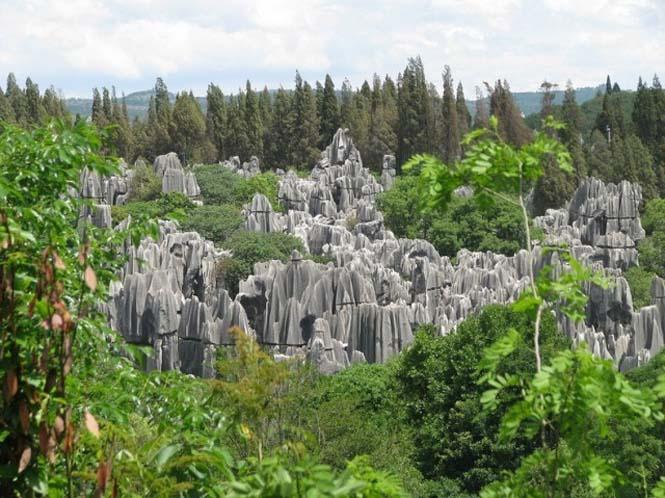 Το μυστηριώδες πέτρινο δάσος στην Κίνα (6)