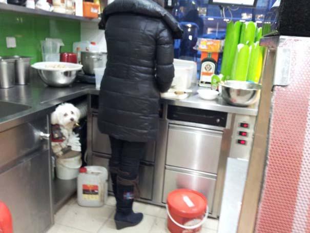 Πράγματα που δεν περιμένεις να δεις σε ένα Fast Food (25)