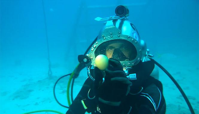 Τι θα συμβεί αν σπάσεις ένα αβγό μέσα στη θάλασσα;