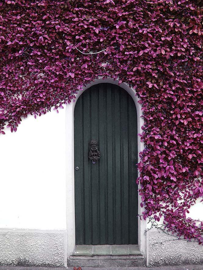 Υπέροχες πόρτες (12)