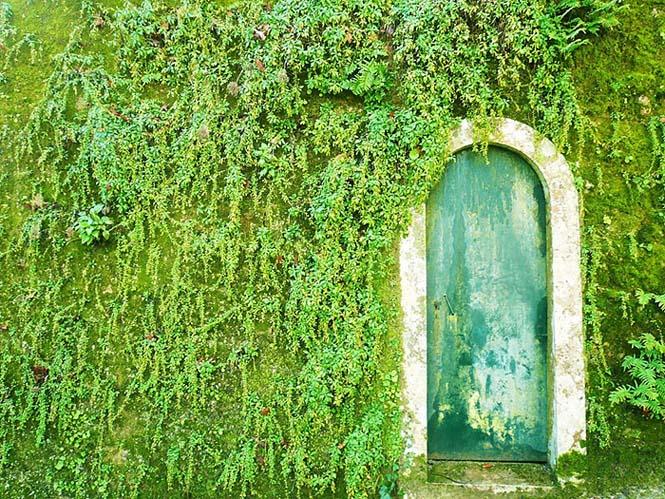 Υπέροχες πόρτες (23)