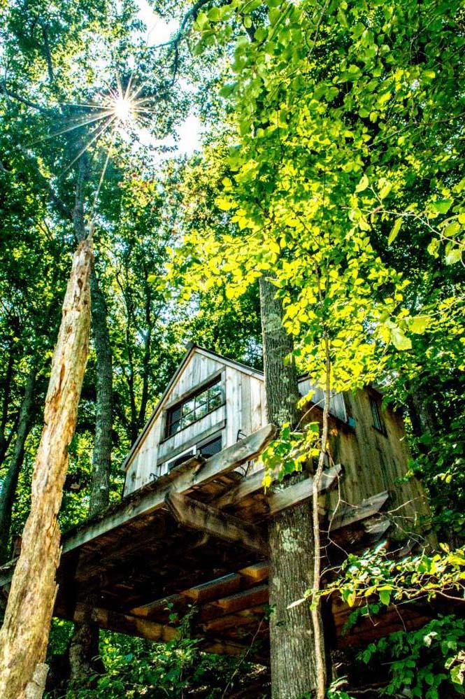 Καλύβα στο δάσος με 4.000 δολάρια (1)