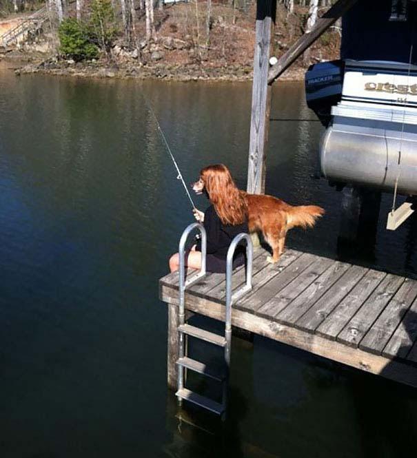 Φωτογραφίες σκύλων τραβηγμένες την κατάλληλη στιγμή (8)