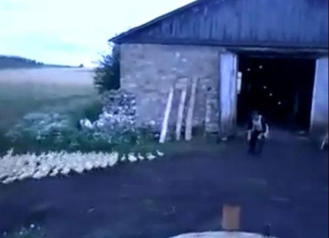 Ρώσος διατάζει στρατό από πάπιες