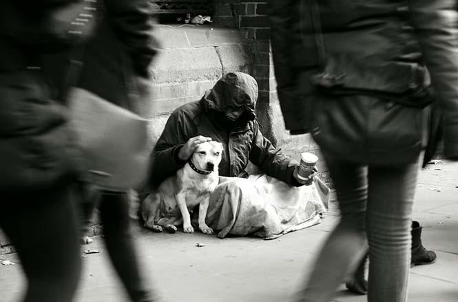 Σκύλοι με άστεγους ιδιοκτήτες (5)