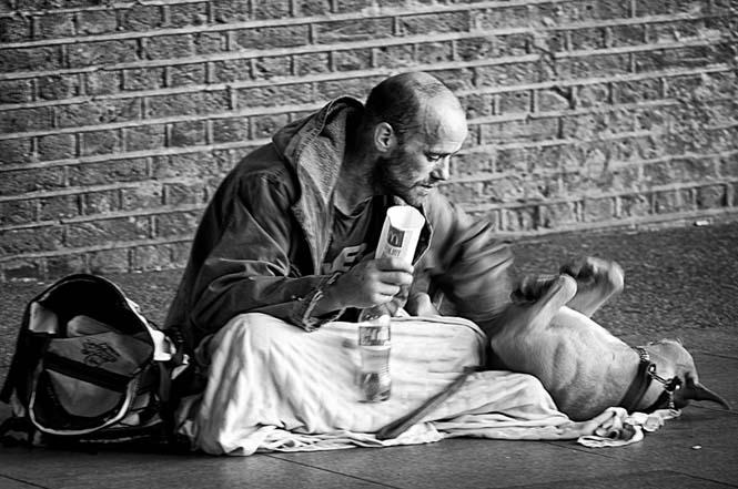 Σκύλοι με άστεγους ιδιοκτήτες (9)