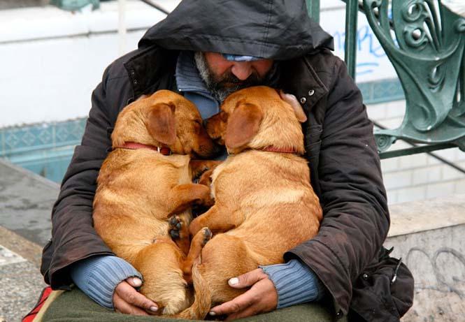 Σκύλοι με άστεγους ιδιοκτήτες (10)