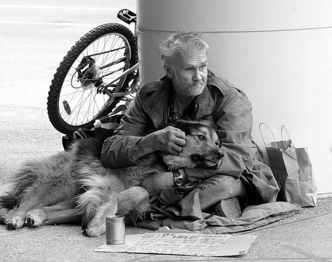 Σκύλοι με άστεγους ιδιοκτήτες (12)