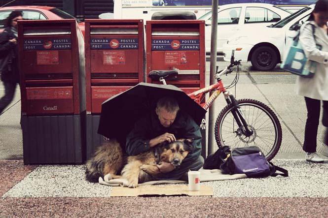 Σκύλοι με άστεγους ιδιοκτήτες (13)