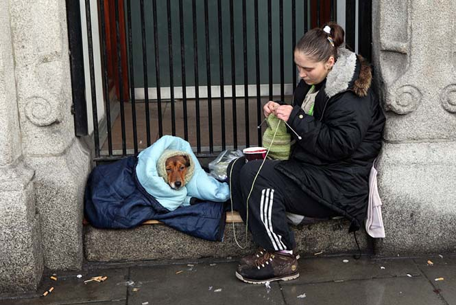 Σκύλοι με άστεγους ιδιοκτήτες (14)