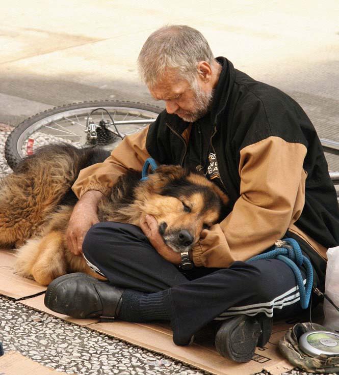Σκύλοι με άστεγους ιδιοκτήτες (15)