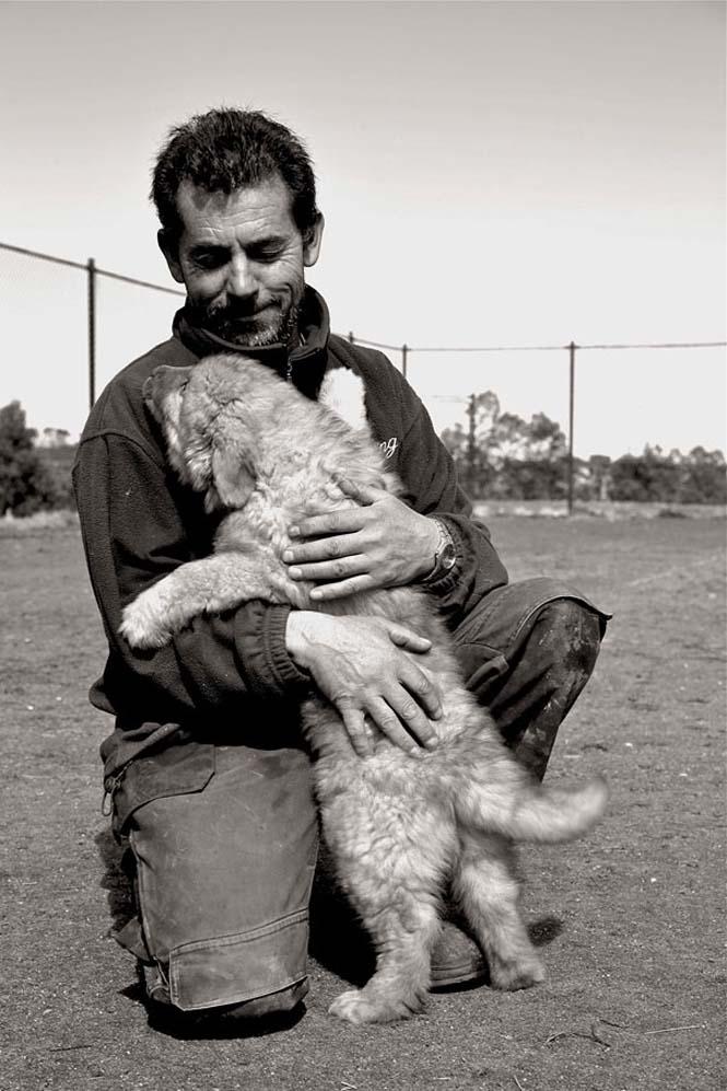 Υπέροχες φωτογραφίες σκύλων που αγκαλιάζουν τον άνθρωπο τους (8)