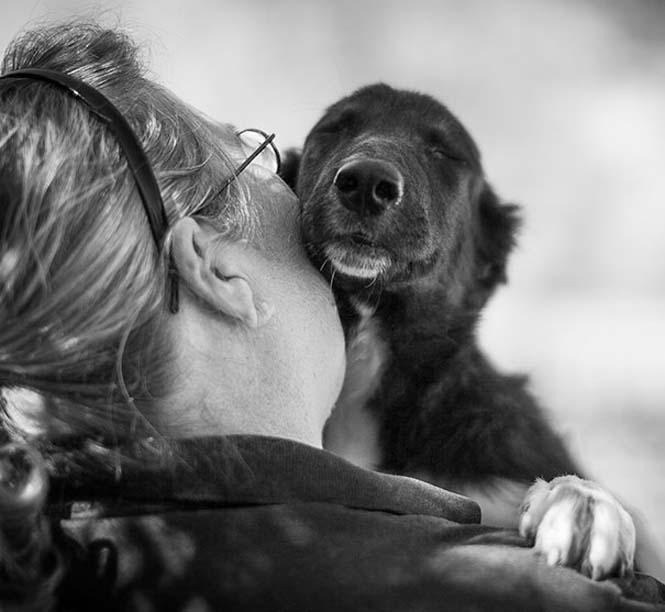 Υπέροχες φωτογραφίες σκύλων που αγκαλιάζουν τον άνθρωπο τους (12)