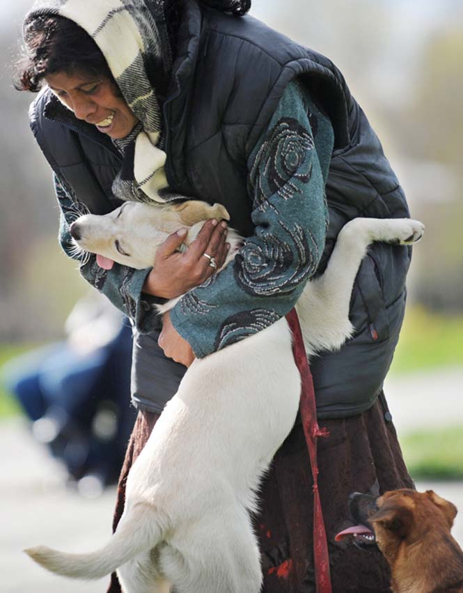 Υπέροχες φωτογραφίες σκύλων που αγκαλιάζουν τον άνθρωπο τους (16)