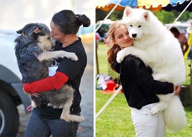 Υπέροχες φωτογραφίες σκύλων που αγκαλιάζουν τον άνθρωπο τους (17)