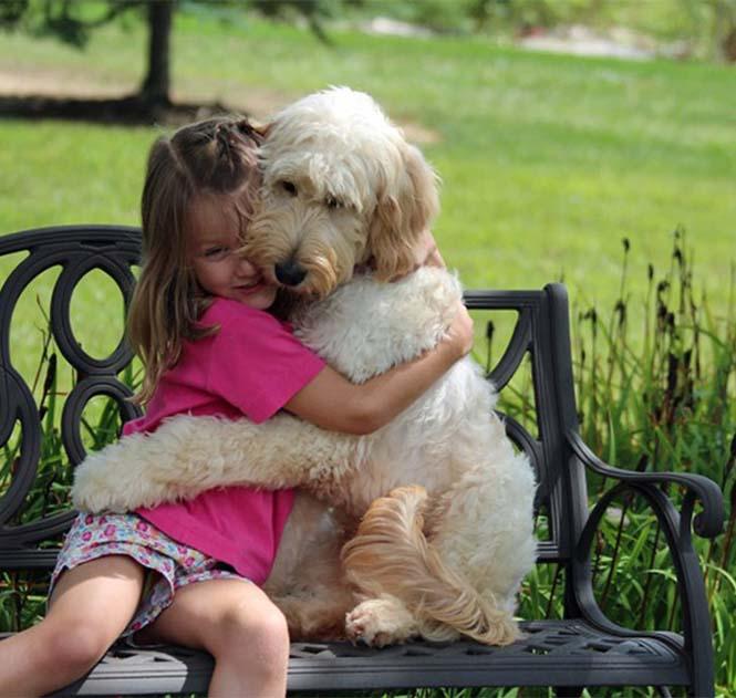Υπέροχες φωτογραφίες σκύλων που αγκαλιάζουν τον άνθρωπο τους (18)