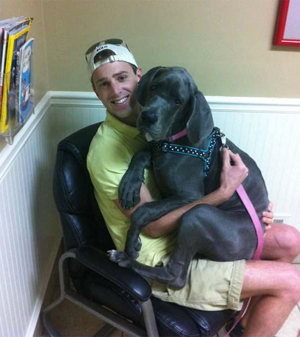 Ζώα που δεν χαίρονται με την επίσκεψη στον κτηνίατρο (24)