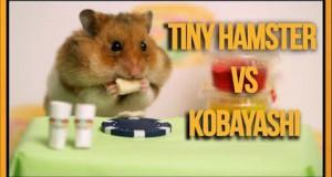 Ένας απίθανος διαγωνισμός φαγητού μεταξύ ανθρώπου και χάμστερ (Video)