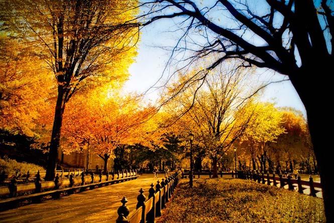 Φθινόπωρο (1)