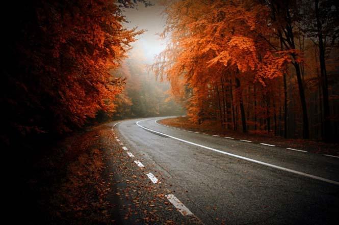 Φθινόπωρο (10)