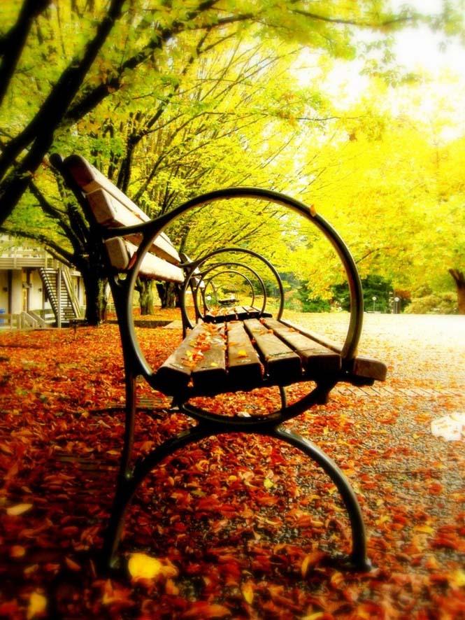 Φθινόπωρο (11)