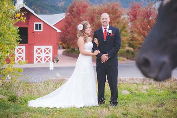 Γαμήλια photobombs (8)