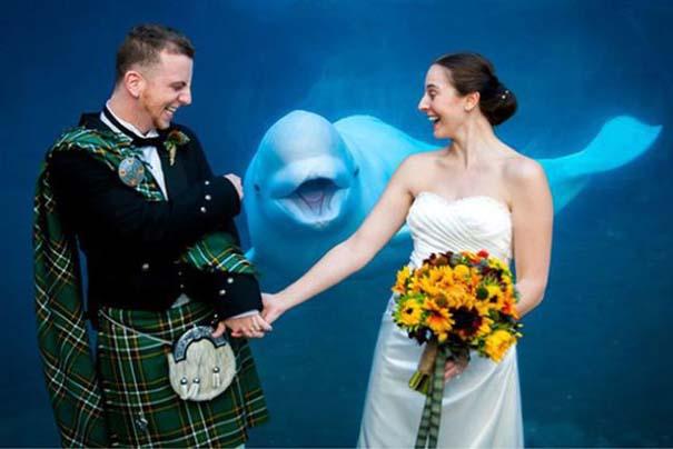 Γαμήλια photobombs (18)