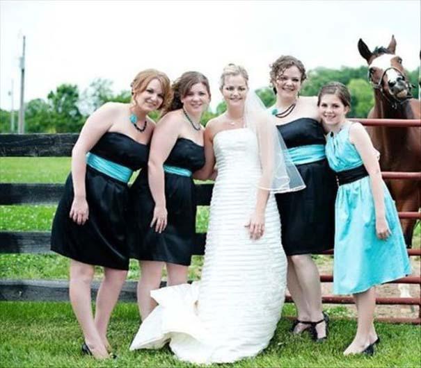 Γαμήλια photobombs (24)