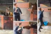 Κοπέλα και άλογο σε απίθανο χορευτικό