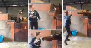 Κοπέλα και άλογο σε απίθανο χορευτικό (Video)