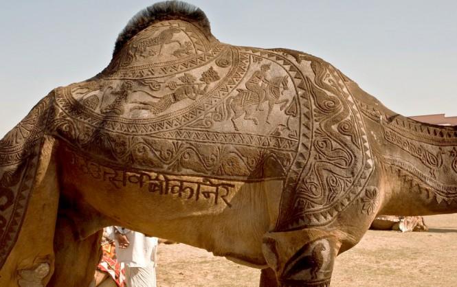 Κούρεμα έργο τέχνης σε καμήλα | Φωτογραφία της ημέρας