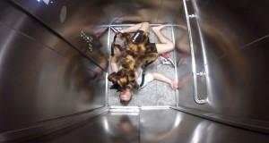 Σκύλος με στολή αράχνης σπέρνει τον τρόμο σε ανυποψίαστα θύματα φάρσας (Video)