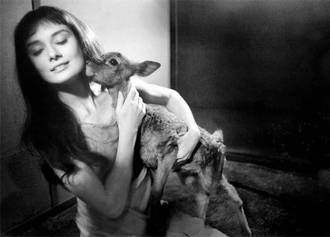 Σπάνιες φωτογραφίες της Audrey Hepburn (8)